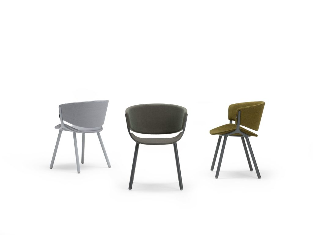 Assise – PHOENIX – OFFECCT 2
