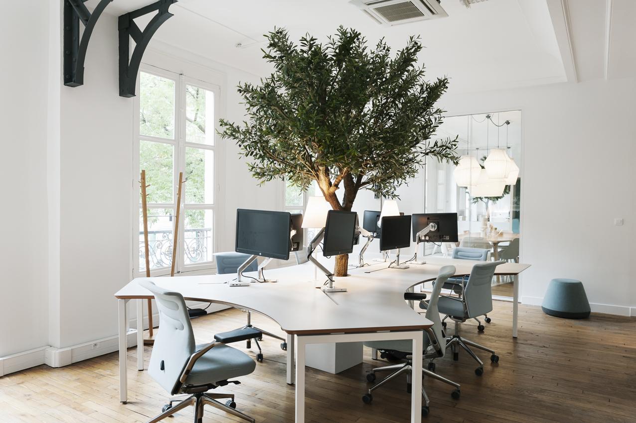 Aménagement d'espace de travail avec le Bench Organic - MOORE Edition