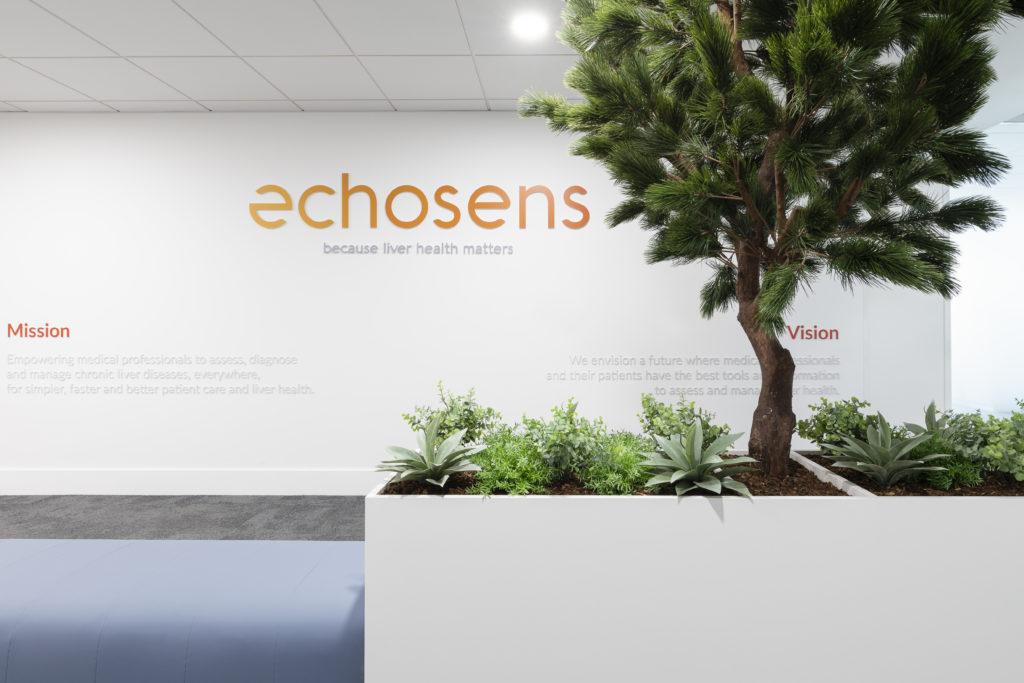 Aménagement d'un espace végétal à l'accueil - Réalisation ECHOSENS - Paris 14