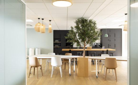 ECHOSENS - Aménagement open space, salle de réunion, cafétéria