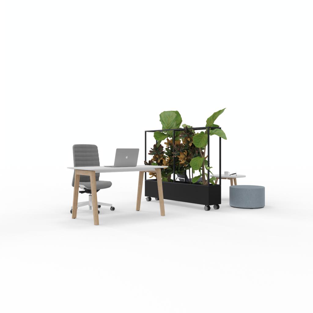 Jardinière – PLANTER BOX – NARBUTAS 2
