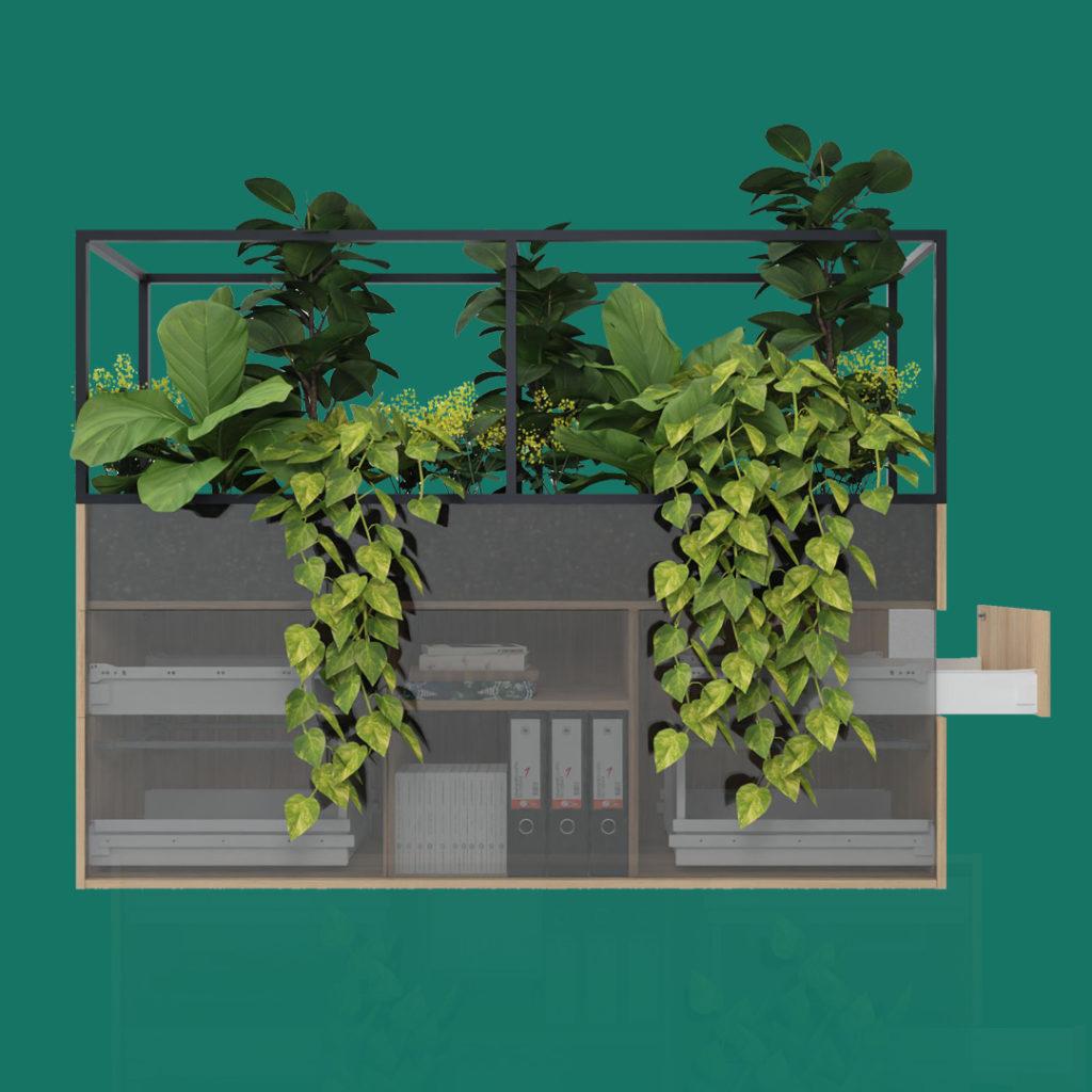 Visuel-planter-box-sans-rien